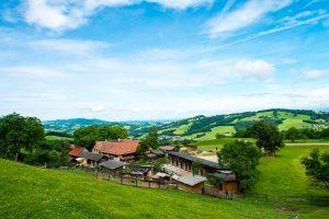 Die Assisi-Höfe des Österreichischen Tierschutzvereins