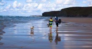 Tipps für Ihren Urlaub mit Hund