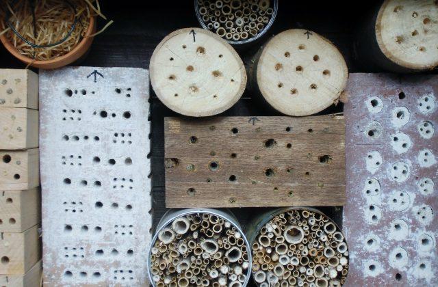 Insektenhotel von eher durschschnittlichen Qualität