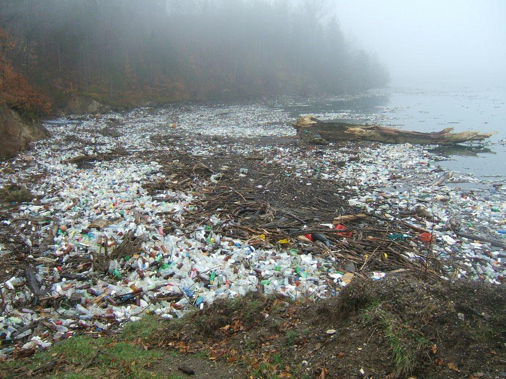 Plastik an unseren Stränden