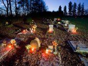 Allerheiligen am Tierfriedhof Waldesruh