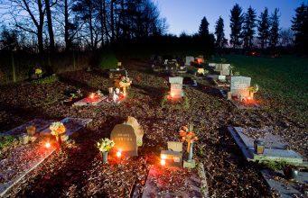 Tierfriedhof Wien