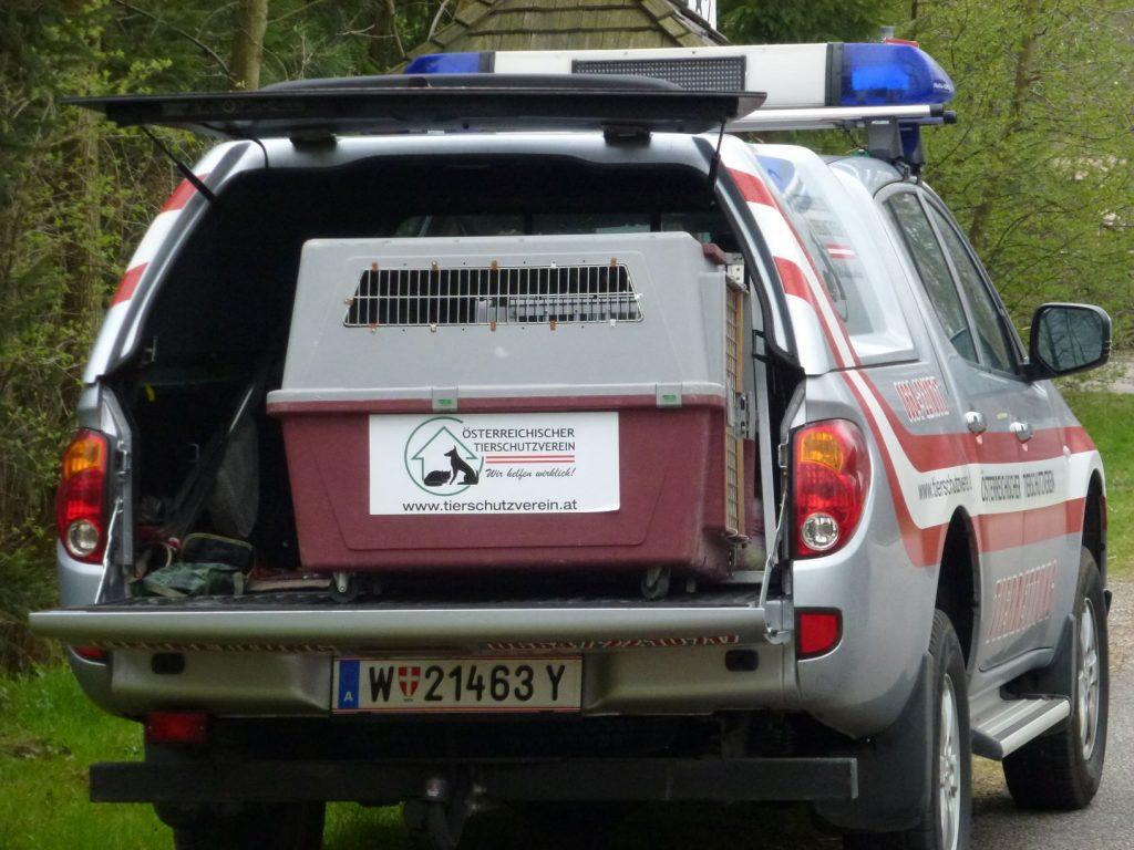 Die Tierrettung des Österreichischen Tierschutzvereins